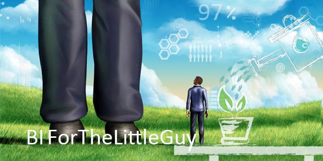 BI-For-The-Little-Guy-blog